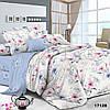 Комплект постельного белья ранфорс 17128