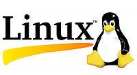 Внедрение операционной системы LINUX