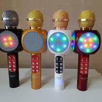 КАРАОКЕ-МИКРОФОН  Караоке микрофон WSTER WS-1816 (USB, microSD, AUX, FM, Bluetooth), фото 1