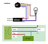 Датчик движения 12 Вольт для освещения, сумеречный датчик движения инфракрасный, фото 6