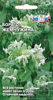 Бораго Жемчужина (огуречная трава) 1 г