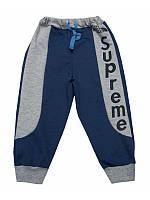 Спортивные демисезонные штаны для мальчика оптом