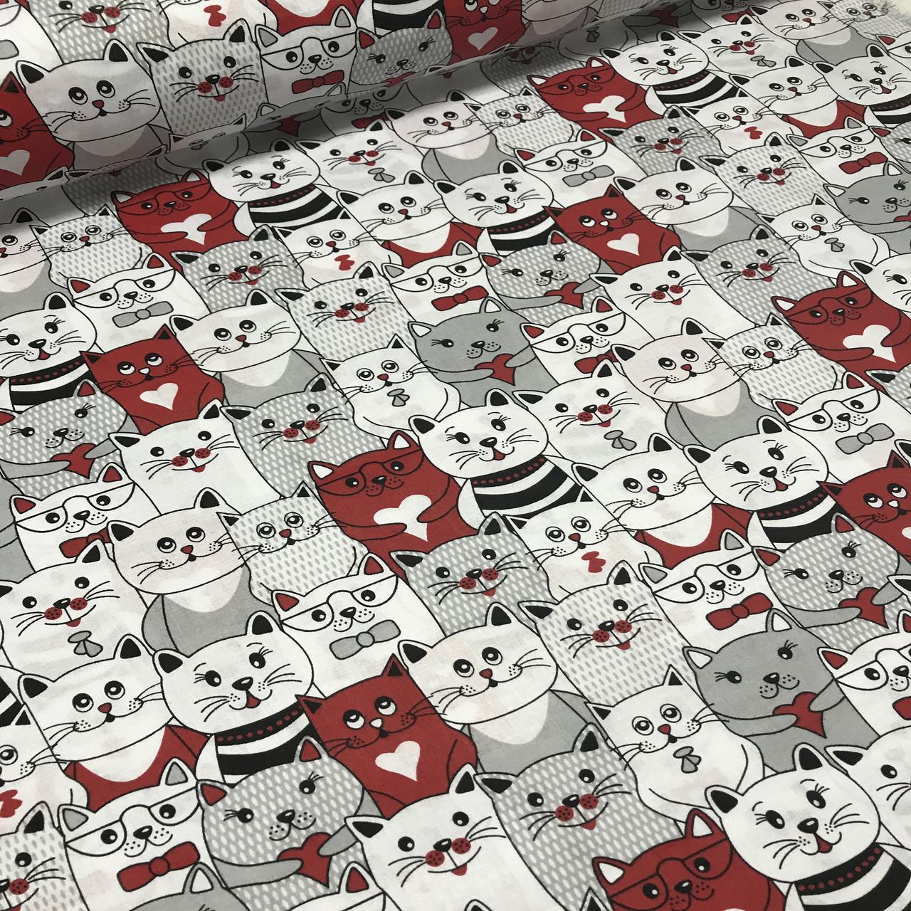 Хлопковая ткань польская коты белые, серые, красные №127