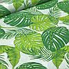 Хлопковая ткань польская листья папоротника зеленые на белом №120
