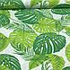 Хлопковая ткань польская листья папоротника зеленые на белом №120, фото 2
