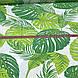 Хлопковая ткань польская листья папоротника зеленые на белом №120, фото 4