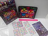 Мозаика стразами (алмазами) Совы, детская серия (CRMk-01-10), фото 10