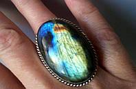 Крупное кольцо с лабрадором