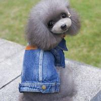 Lovoyager D14 Новые повседневные модные домашние животные плюс размер True Denim Jacket Jean Coats для собачьего щенка XL