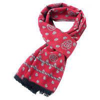 Мужчины держат теплый модный шарф