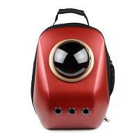 Capsule Space Bubble Breathable Портативный рюкзак для собак Китайский красный