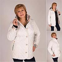 Куртка женская большие размеры 52-62 Весна