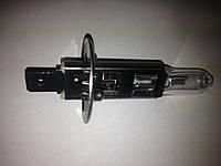 Лампа АКГ 24-70 Н1, P14.5S AKG 24/70 H1