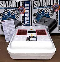 Инкубатор автоматический Рябушка Smart Turbo-42 цифровой с инфракрасным нагревателем