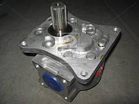 Насос НШ-100М-3 MASTER (аналог НШ-100В-3) (производство Гидросила), AGHZX