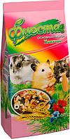 Корм «Фиеста Хомячок» для хомяков и декоративных мышей Природа™, 650г