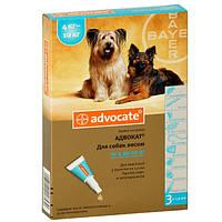 Адвокат для собак 4-10 кг от блох и клещей, цена за 1 пипетку