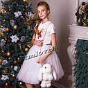 Подростковая Юбка Пачка Milano цвета в ассортиментех цвета разные Размеры 116- 128, фото 3