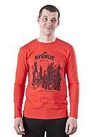 Футболка мужская с длинным рукавом Авеню 2 с принтом, фото 1