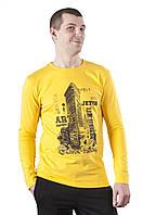 Футболка мужская с длинным рукавом Flatiron 3 с принтом, фото 1
