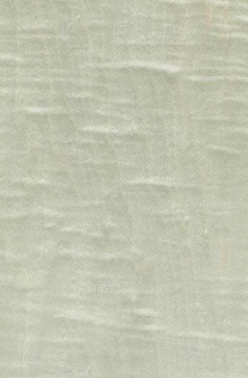 Шпон Сикамор Фризе крашеный Табу Арт. 09.S.005