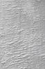 Шпон Сикамор Фризе крашеный Табу Арт. 09.S.012