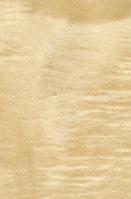 Шпон Сикамор Фризе крашеный Табу Арт. 09.S.087