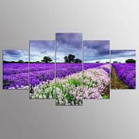 5 панелей Красная и Белая цветочная рамка для лаванды HD Print Wall Picture для домашнего декора 30x40cмx2+30x60cмx2+30x80cмx1