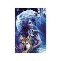 Naiyue 6256 Beauty and Wolf печатает бриллиантовые картины Серо-голубой