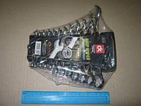 Набор ключей комбинированных 6-22мм, 12 пр., пластик , ABHZX