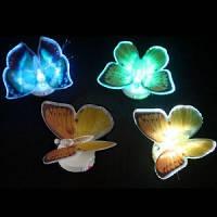 Ночная светящаяся бабочка