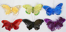 Декоративная бабочка 14см, 6 видов
