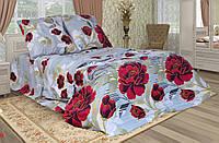 Постельный комплект бязь голд красные цветы на голубом