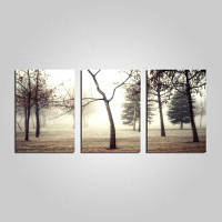 E-дома в обрамлении тумана Лесной мотив печати холст 3шт