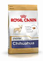 Royal Canin (Роял Канин) Chihuahua Junior (0,5 кг) корм для щенков породы Чихуахуа до 8 месяцев
