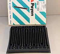 Болты головки блока цилиндров на Renault Master III  2010-> 2.3dCi  — Payen (США) - HBS373