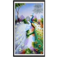 AIYUE K029 Два павлина для рисования животных Алмазная живопись Алмазная вышивка