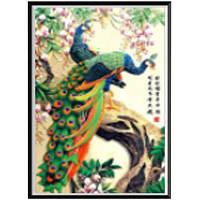 AIYUE 282-3 Печать павлиньей живописи для рисования Алмазная живопись Алмазная вышивка Цветной