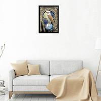 Naiyue 9397 Алмазный чертеж для рисования сова Цветной