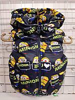 Детская жилетка для мальчика Миньйон р. 92-116
