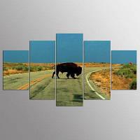 YSDAFEN 5 Panel Modern Hd Bison Прогулка по дорожке Картины из холста для гостиной 30x40cмx2+30x60cмx2+30x80cмx1 (12x16дюймовx2+12x24дюйм
