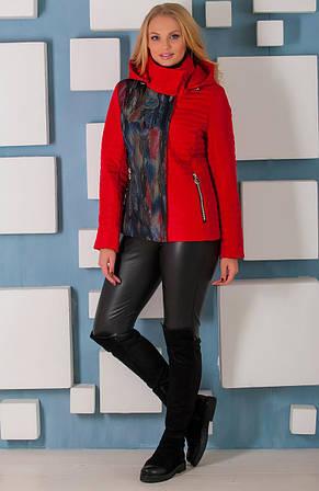 Короткая демисезонная куртка  Разные цвета
