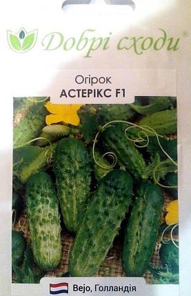 Семена огурца Астерикс 20шт ТМ ДОБРІ СХОДИ, фото 2