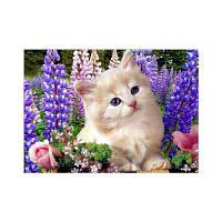 Naiyue 9871 Кошки Print Draw Алмазный рисунок Цветной