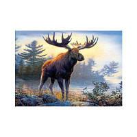 Naiyue 9886 Moose Print Draw Алмазный рисунок Цветной