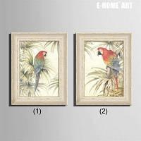 Специальная конструкция Каркасная картинка Два попугаев Печать 2PCS 20 x 14 дюймов (50cм x 35cм)