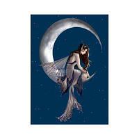 Naiyue 9883 Moon Beauty Print Draw Алмазный рисунок Цветной