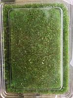 Икра Тобико Икко Ренка Васаби( зеленая) 0,5 кг   А-0106