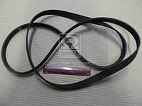 Ремень генератора (Производство SsangYong) 0119971992, AEHZX