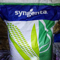 Семена кукурузы, Syngenta, СИ Фортаго, ФАО 260